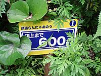 P6270060